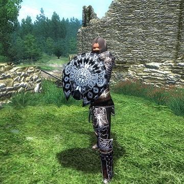CTAddPose_2ch_0_18_7zから剣と盾を構える.kfのモーション